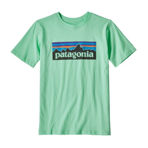 Tricou Baieti Drumetie Patagonia P-6 Logo Organic