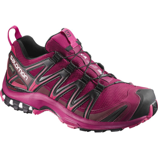 Pantofi Alergare Salomon Xa Pro 3D Gore-Tex Femei
